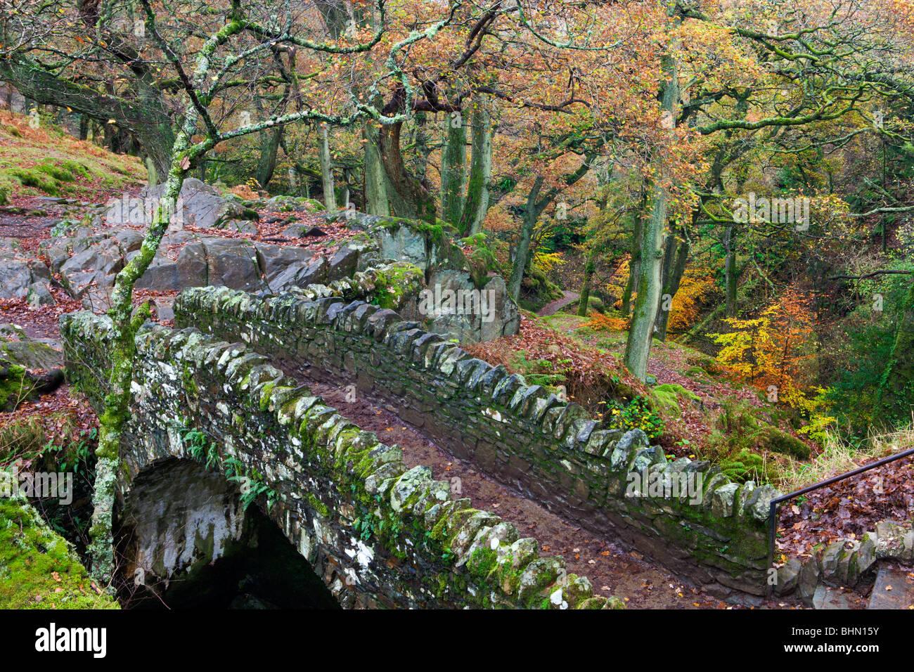 Traversée du pont de pierre cascade Aira Force, Parc National de Lake District, Cumbria, England, UK. L'automne Photo Stock