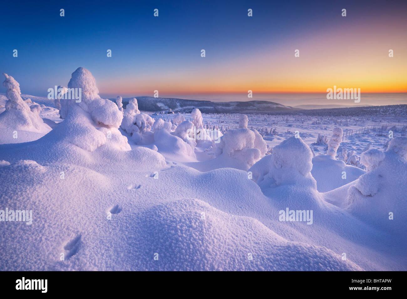 Paysage hiver neige juste après le coucher du soleil, les montagnes de Karkonosze, Pologne Photo Stock