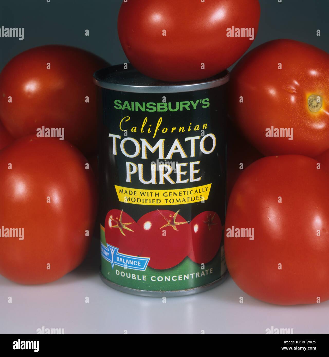 Boîte de purée de tomates génétiquement modifiées avec des tomates mûres Photo Stock