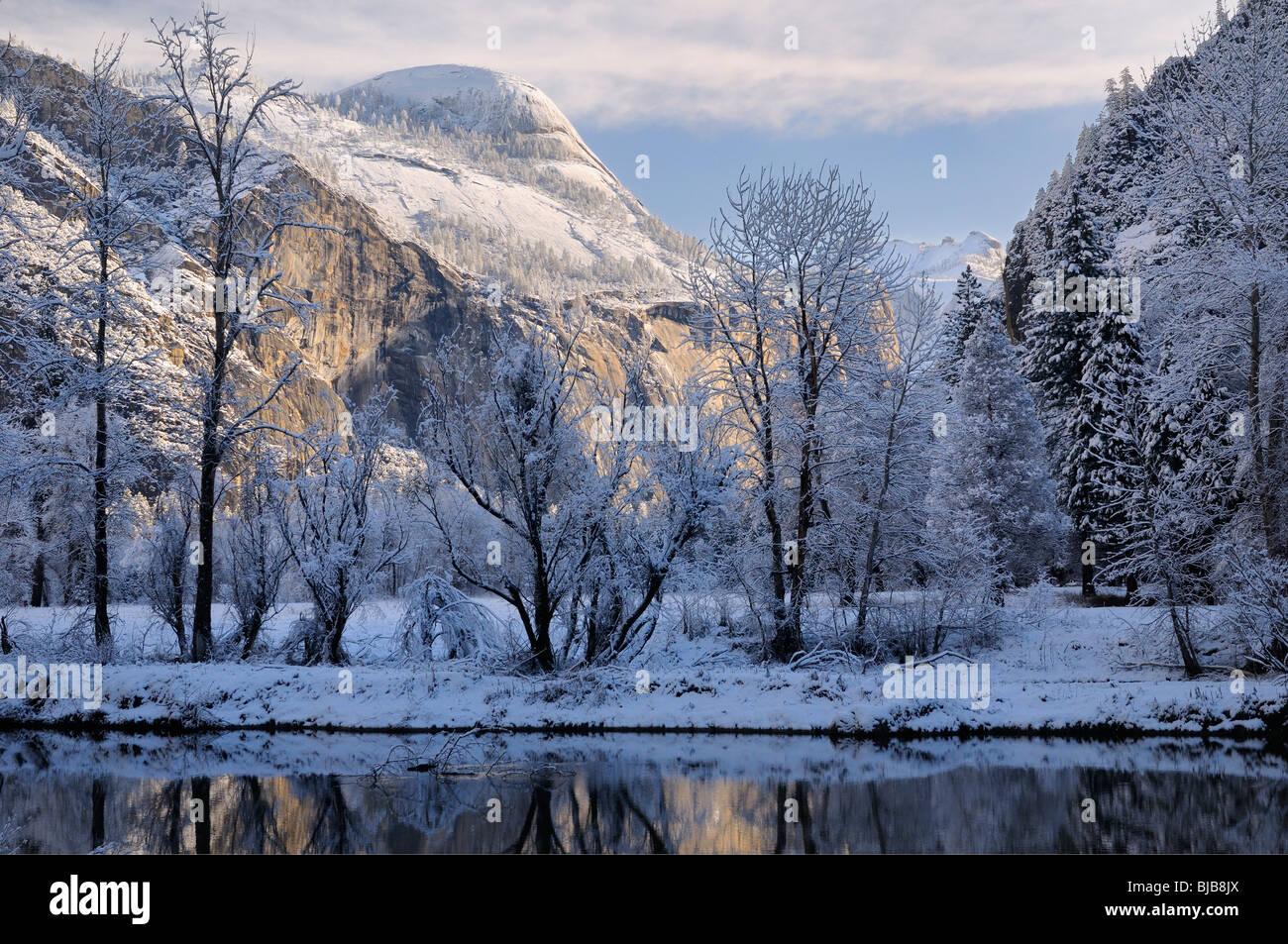 Les arbres couverts de neige le long de la rivière Merced avec north dome à morning sun yosemite national park california usa Banque D'Images
