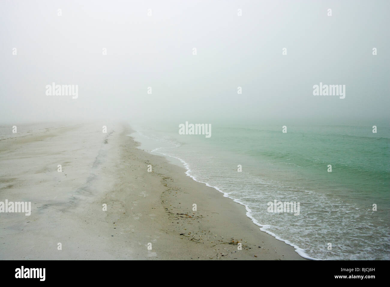 Plage couverte de brouillard Photo Stock