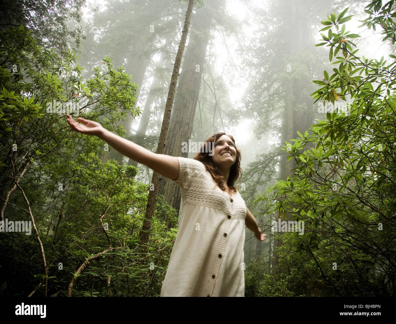 Femme marche dans une forêt de séquoias géants Photo Stock