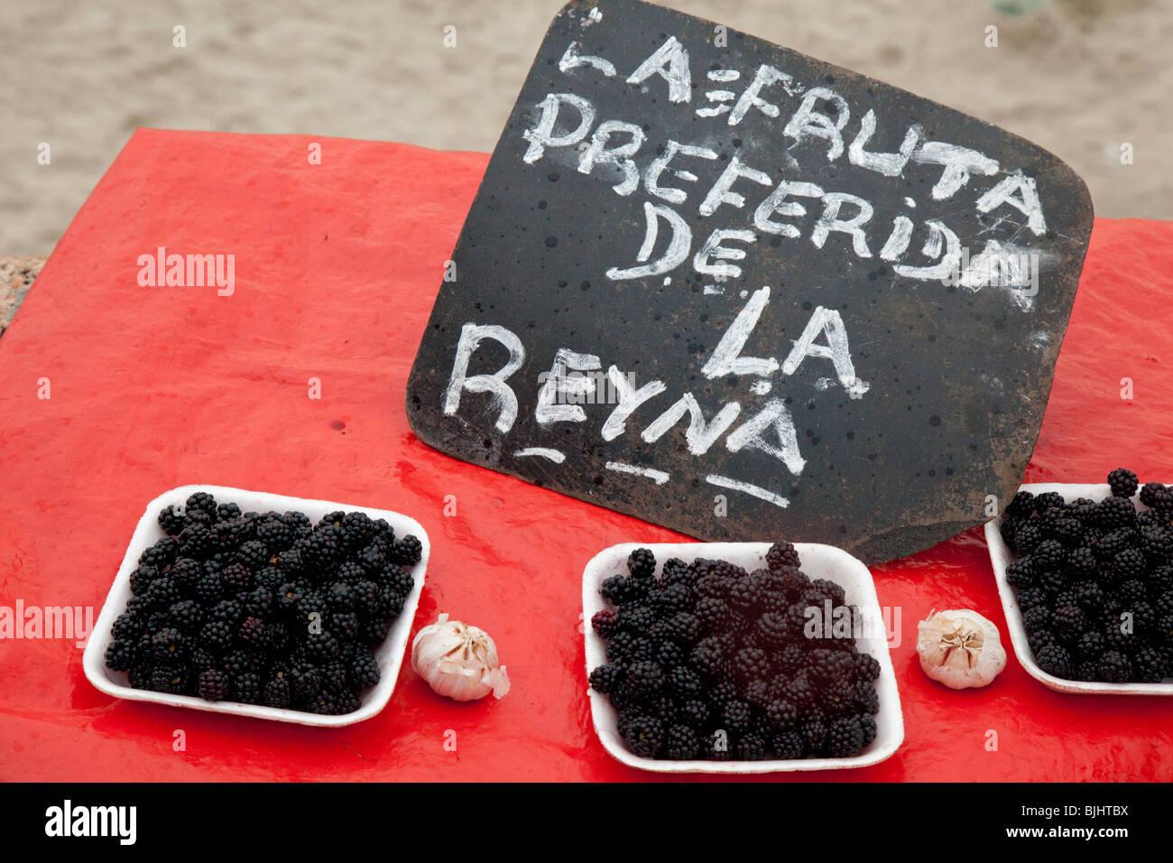 """Offrant des mûres pour la vente sur la 'journée de Yemanja"""", déesse de l'eau, à Photo Stock"""