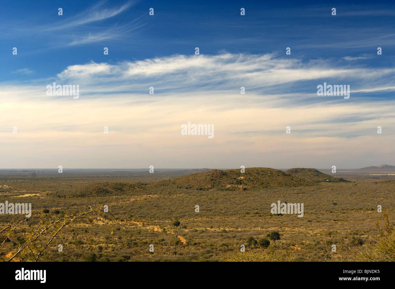 Vue sur le vaste paysage de savane africaine du Madikwe Game Reserve, Afrique du Sud Photo Stock