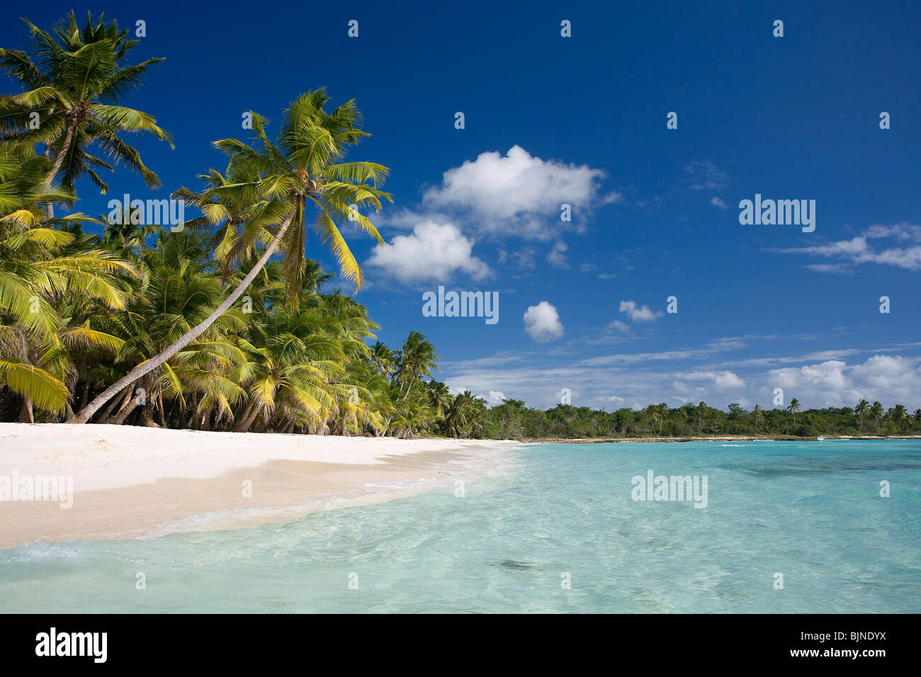 L'île de Saona, République Dominicaine Photo Stock
