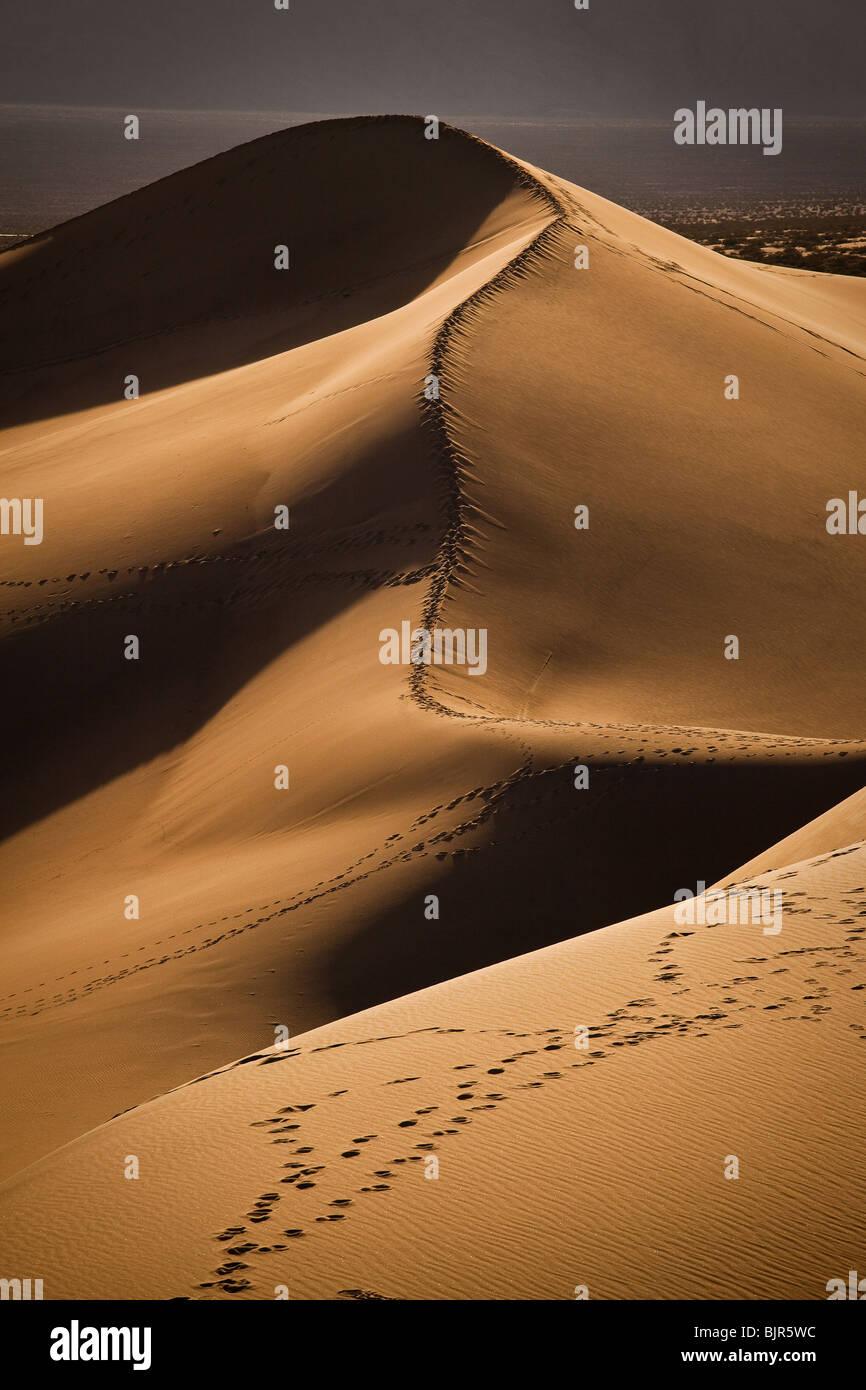 Dunes de sable de Stovepipe Wells dans Death Valley National Park, California, USA. Banque D'Images