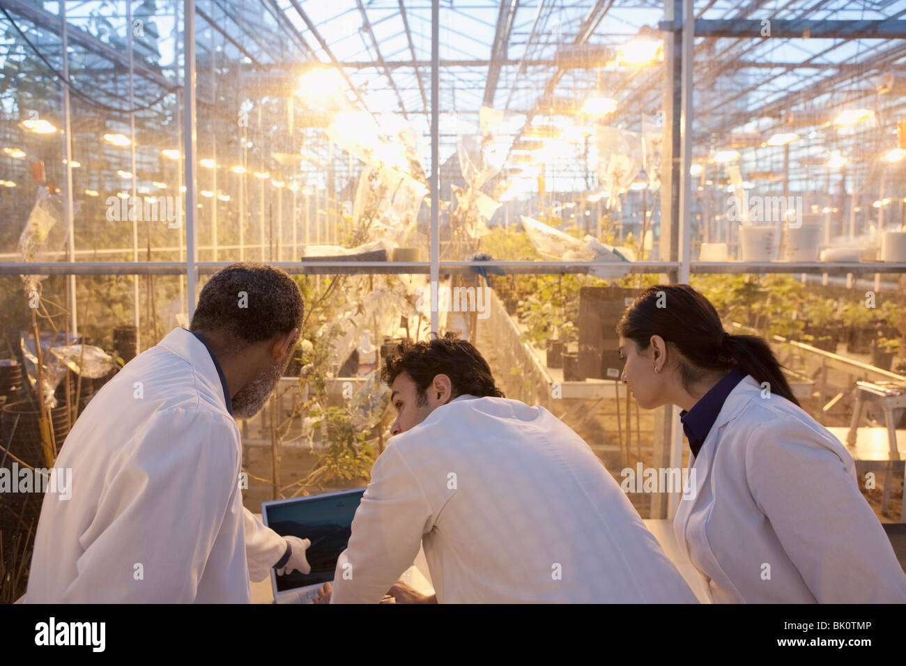 Les scientifiques qui travaillent en laboratoire à effet Banque D'Images