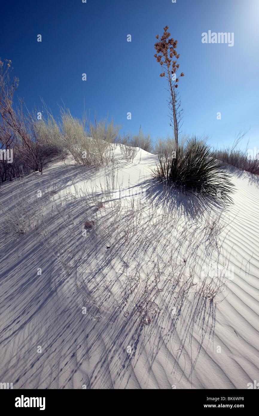 White Sands National Monument, Nouveau-Mexique Photo Stock