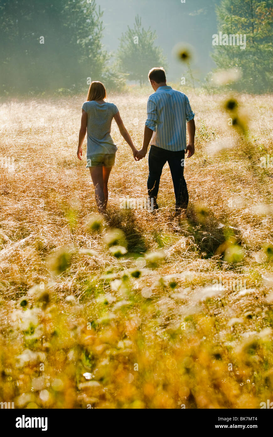 Jeune couple walking through field holding hands Photo Stock