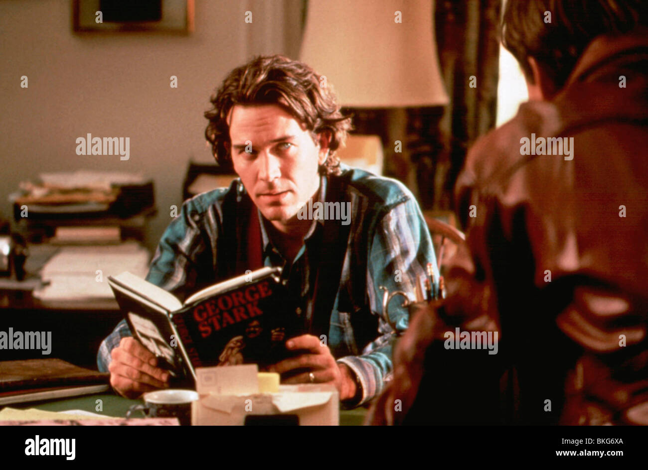 L'OBSCURITÉ DE LA MOITIÉ (1993) TIMOTHY HUTTON DRKH 023 Photo Stock