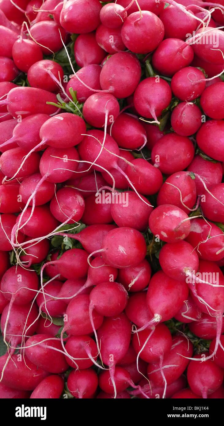 Les radis biologiques frais sur l'affichage à un marché de producteurs. Photo Stock