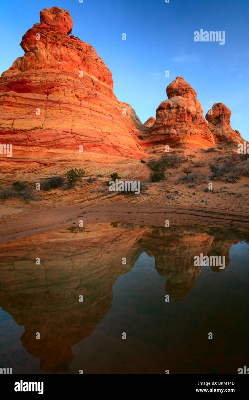 Rock formations reflètent dans une petite piscine d'eau de pluie dans les tipis du vermillon Cliffs National Photo Stock