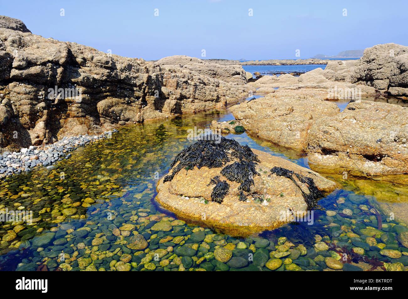 Une piscine dans les rochers à sennen Cove, à Cornwall, uk Photo Stock