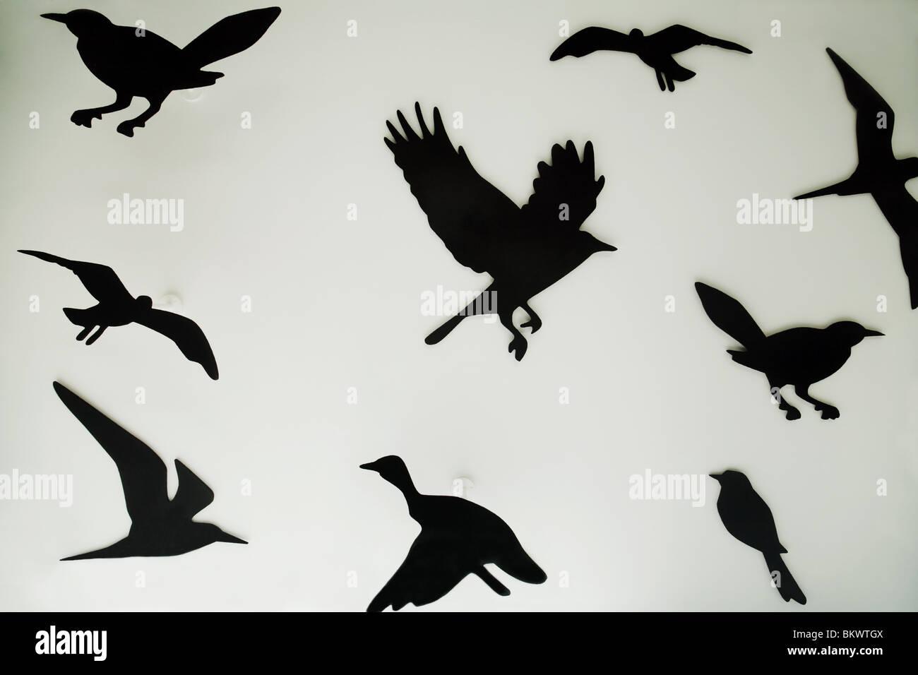 Silhouettes d'oiseaux dans une vitrine d'affichage, Regent Street, London UK Photo Stock