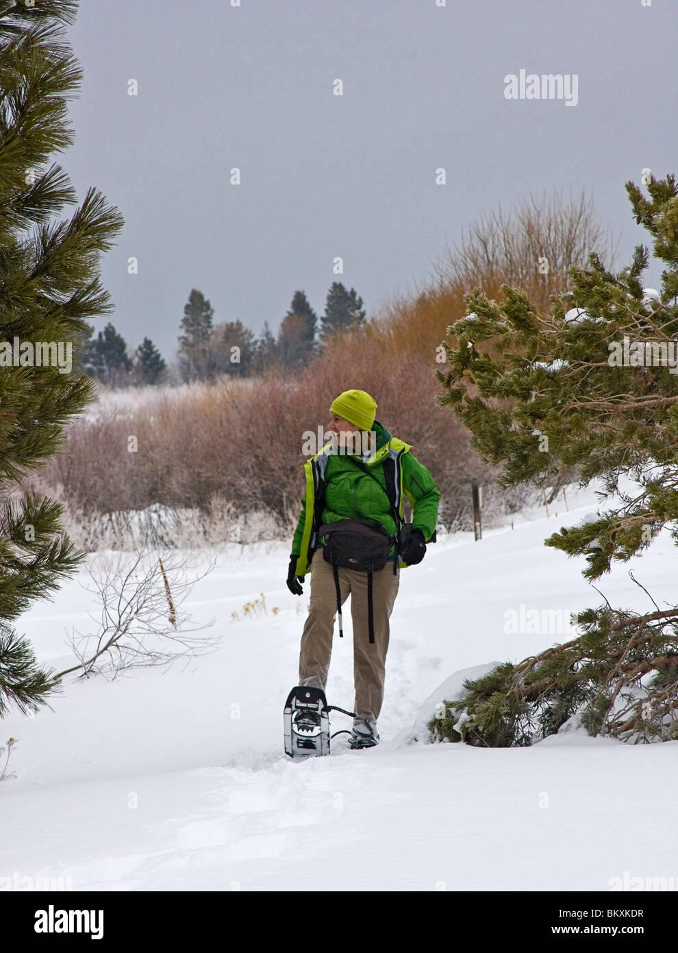Femme sur la raquette randonnée pédestre durant une tempête journée d'hiver. South Lake Photo Stock
