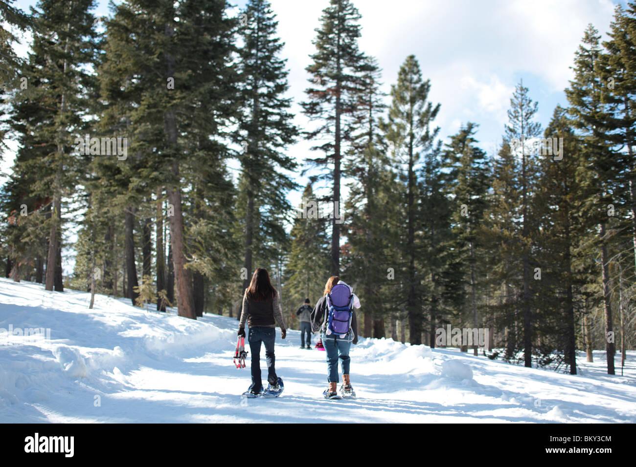 Deux familles de la raquette dans le désert couvert de neige du lac Tahoe, Calfornia. Photo Stock