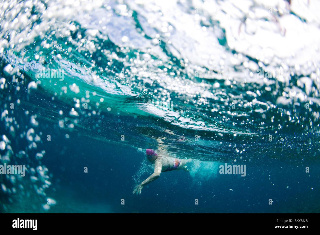 Vue sous-marine d'un nageur bénéficiant d''un bain relaxant dans les eaux tropicales au large Photo Stock