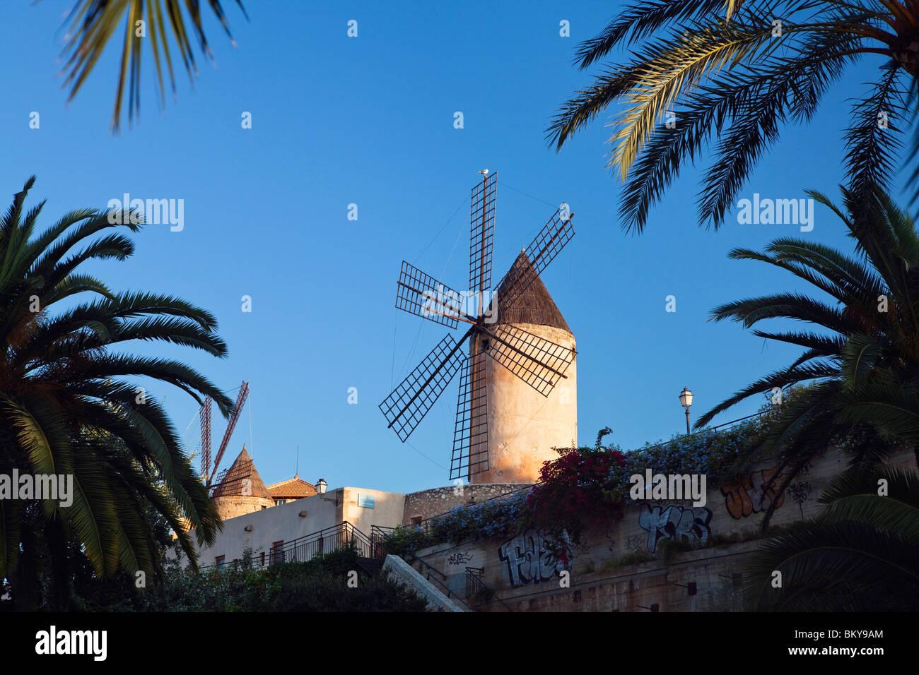 Les moulins à vent historiques de Es Jonquet avec mur de ville dans la vieille ville de Palma de Mallorca, Photo Stock