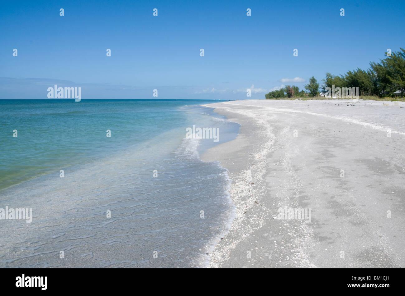 Plage couverte de coquillages, Captiva Island, la Côte du Golfe, Floride, États-Unis d'Amérique, Photo Stock