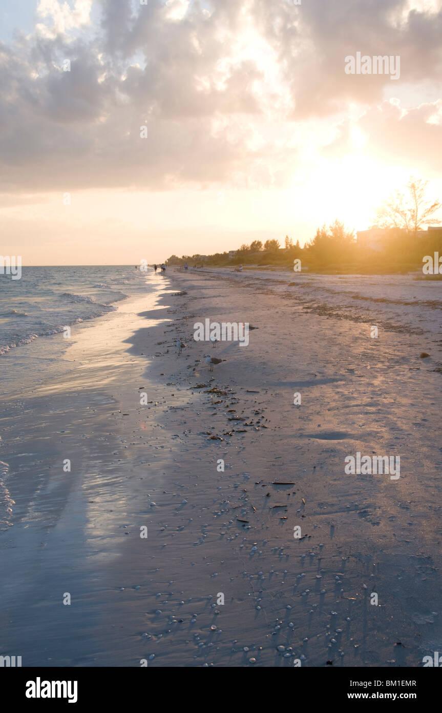 Coucher du soleil sur la plage, l'île de Sanibel, la Côte du Golfe, Floride, États-Unis d'Amérique, Photo Stock