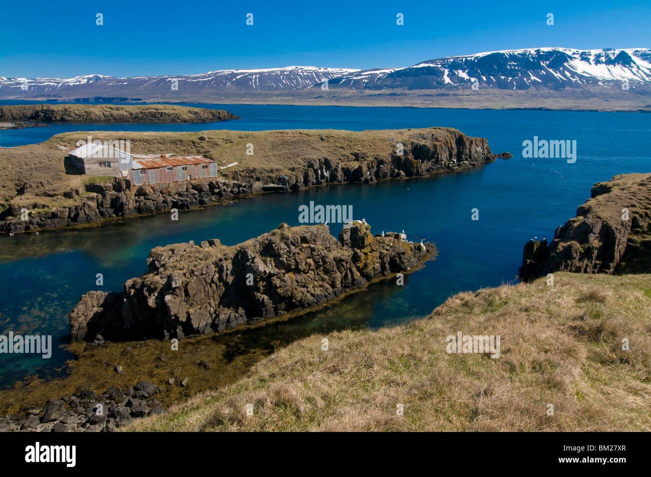 Fjord typique paysage sur l'autre, Vopnafjordur, Islande, régions polaires Photo Stock