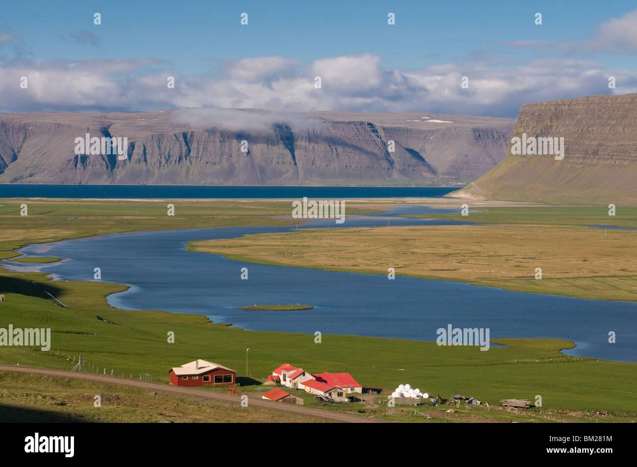Ferme dans le paysage typique de fjord, Patreksfjordur, Islande, régions polaires Photo Stock