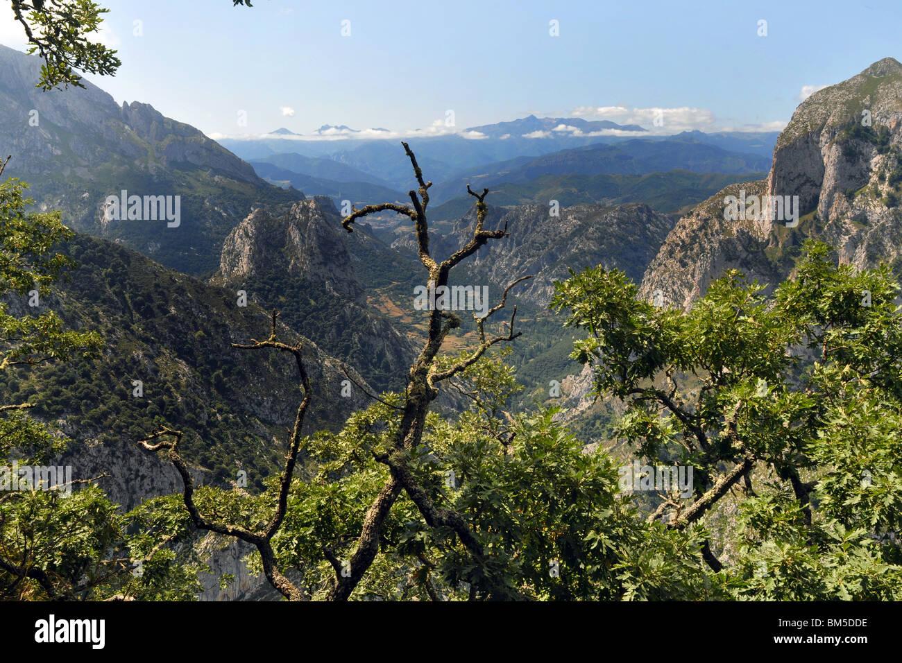 Picos de Europa, au nord de l'Espagne Asturies Photo Stock