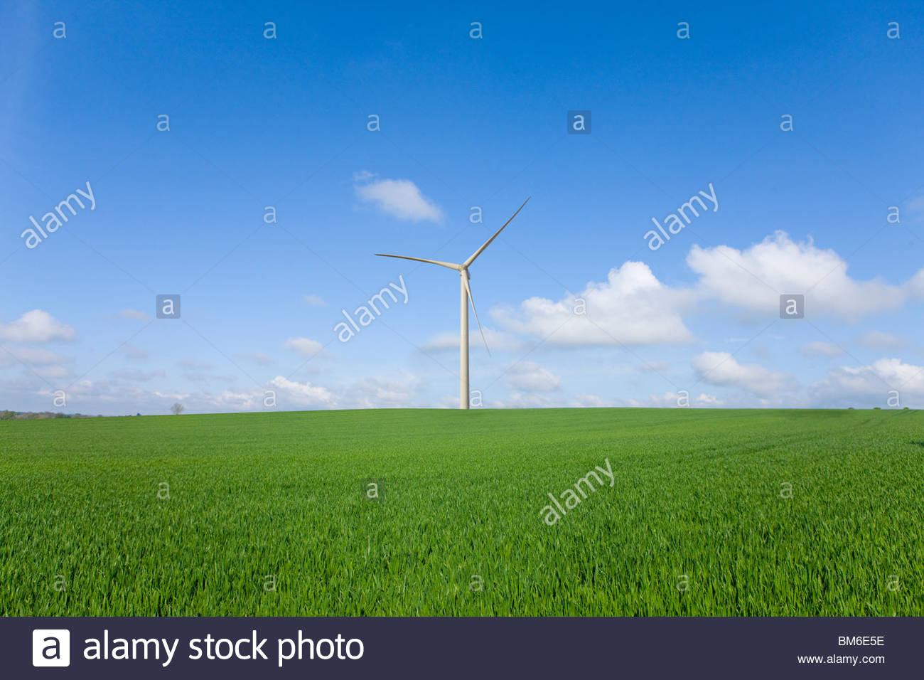 Wind turbine in green field à distance Photo Stock