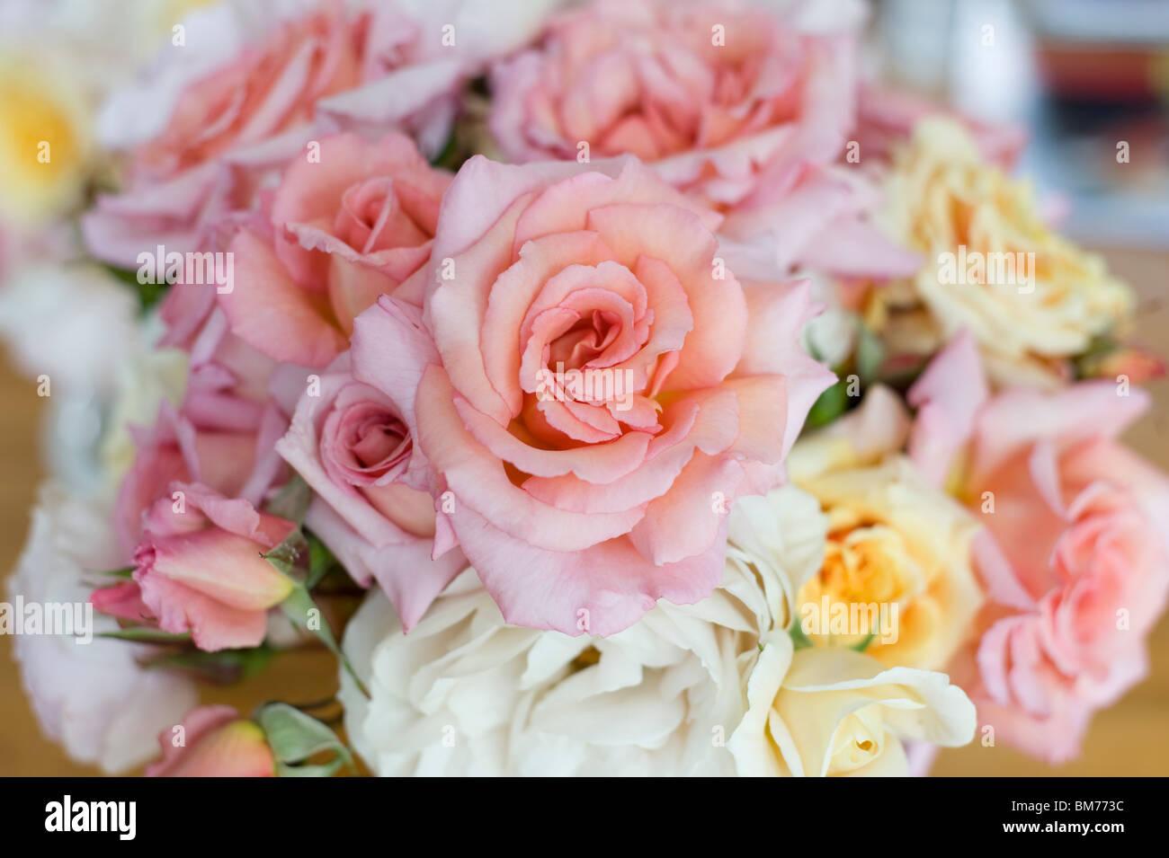 un bouquet de roses anciennes en été banque d'images, photo stock