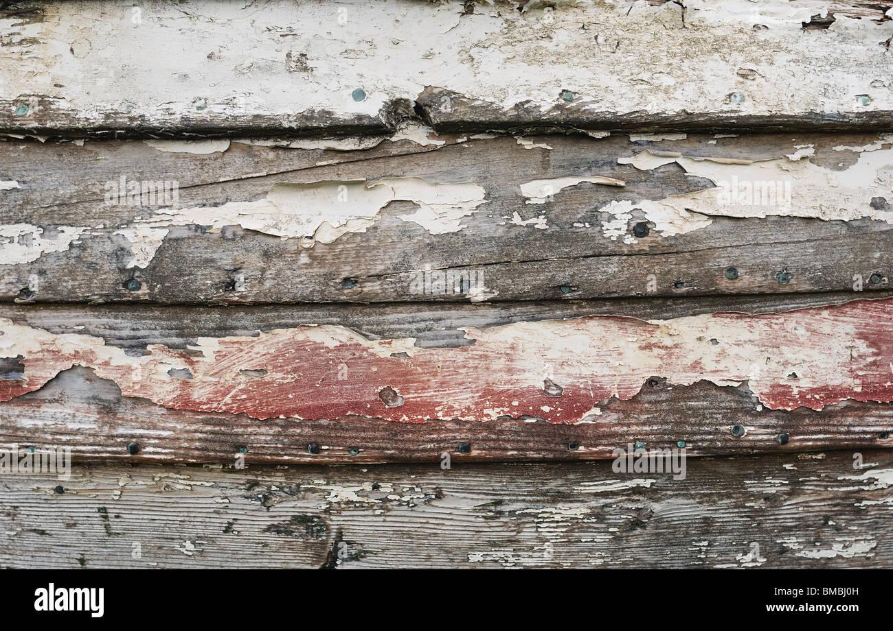 Bois en décomposition Photo Stock