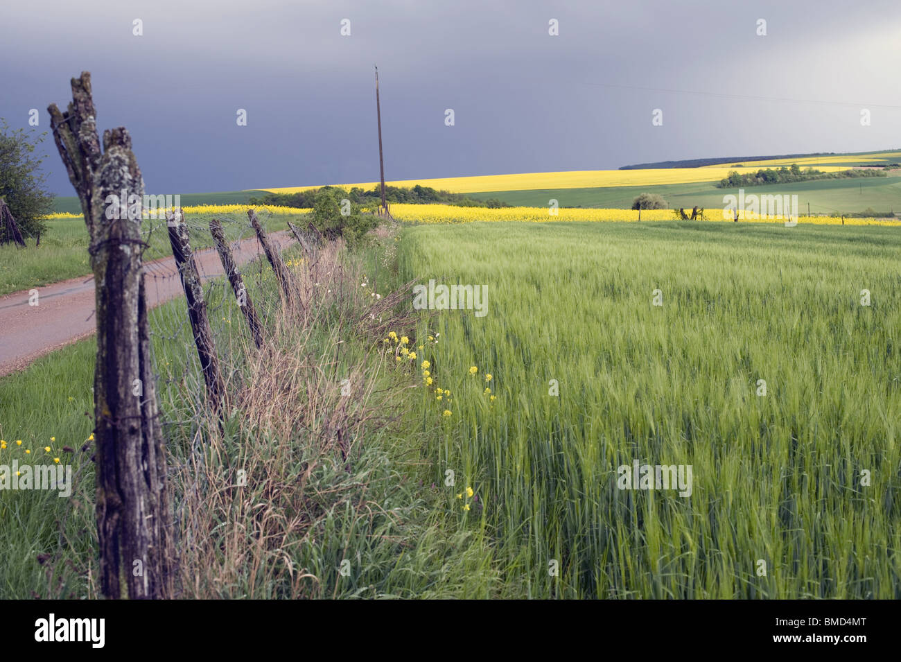 Paysage de campagne, Barriere, verdure nuages Photo Stock