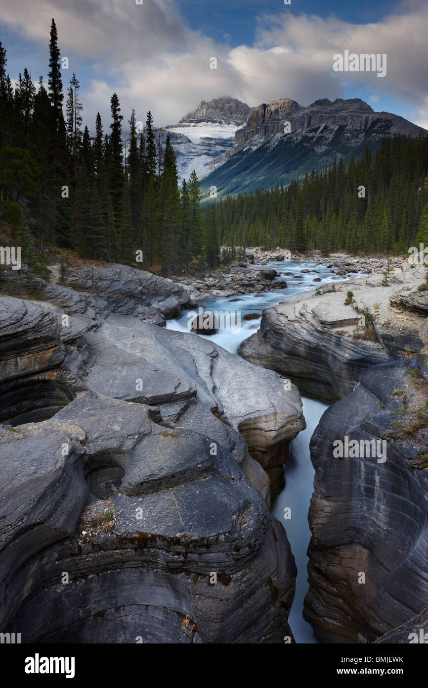 Canyon Mistaya, à l'aube, nr Saskatchewan Crossing, Banff National Park, Alberta, Canada Photo Stock