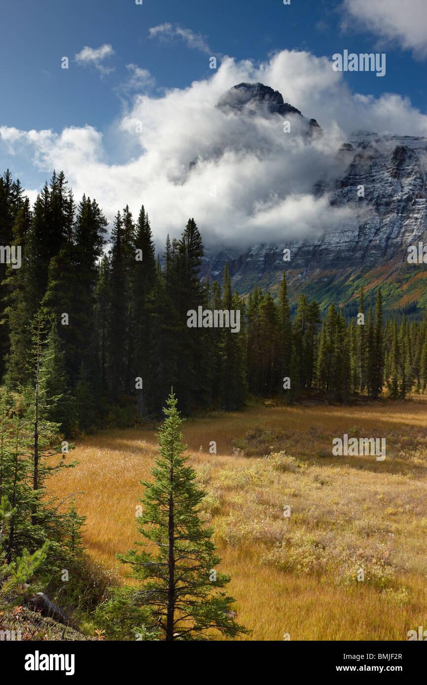 Promenade des glaciers de montagne, épaulette, Banff National Park, Alberta, Canada Photo Stock