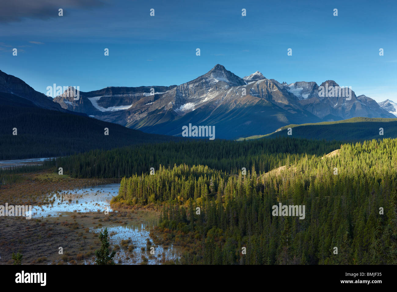 La Rivière Howse et Mont Forbes, Saskatchewan Crossing, Banff National Park, Alberta, Canada Photo Stock