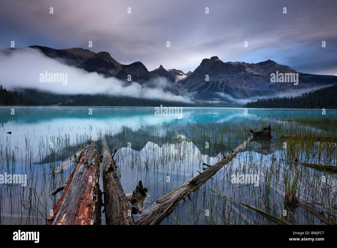 Emerald Lake à l'aube avec les pics du président au-delà de la plage, le parc national Yoho, Photo Stock