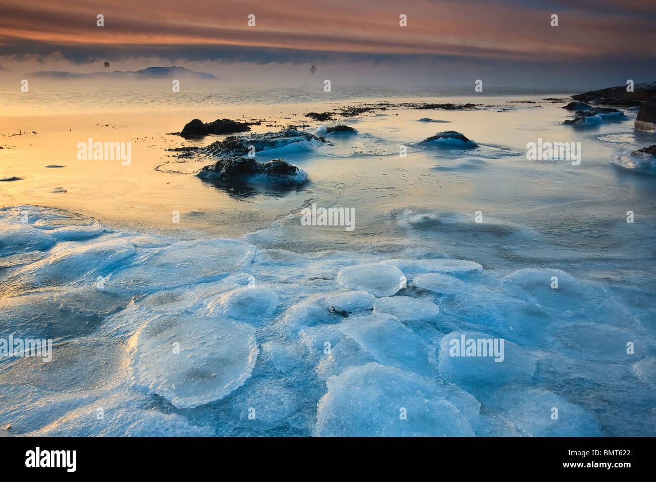 Paysage de glace à Larkollen à Rygge kommune, Østfold fylke, la Norvège. Photo Stock