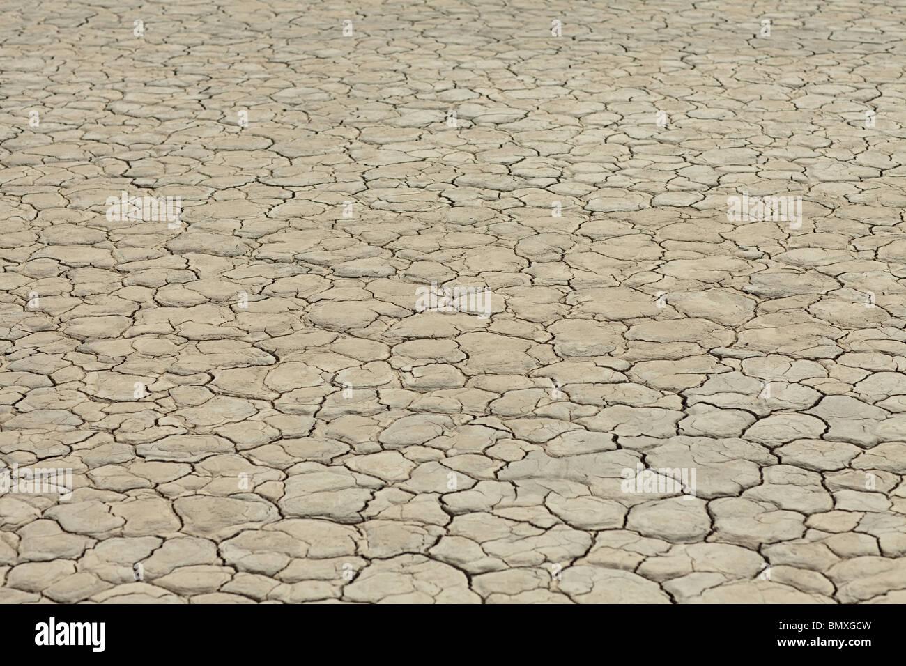Surface fissurée de dry lake bed Photo Stock