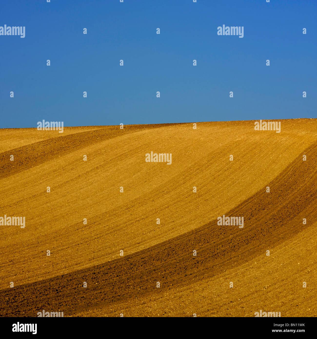 Le ciel bleu et le champ labouré avec horizon Photo Stock