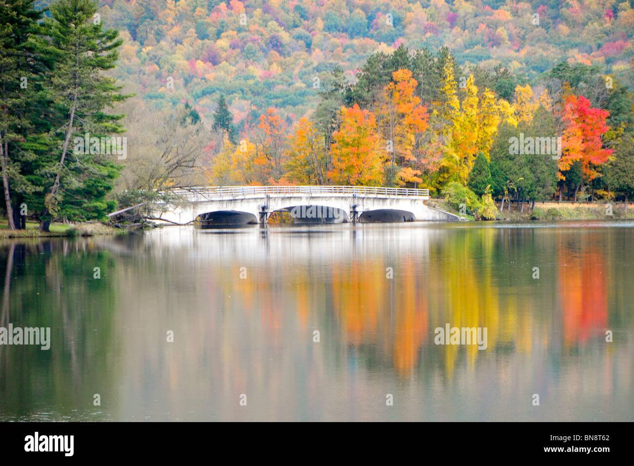 Red House Lake Allegany State Park New York Photo Stock