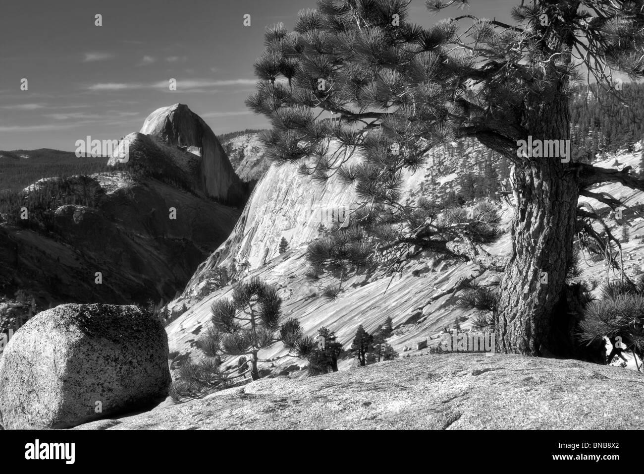 Roche de granit et de demi-dôme. Yosemite National Park, Californie Banque D'Images