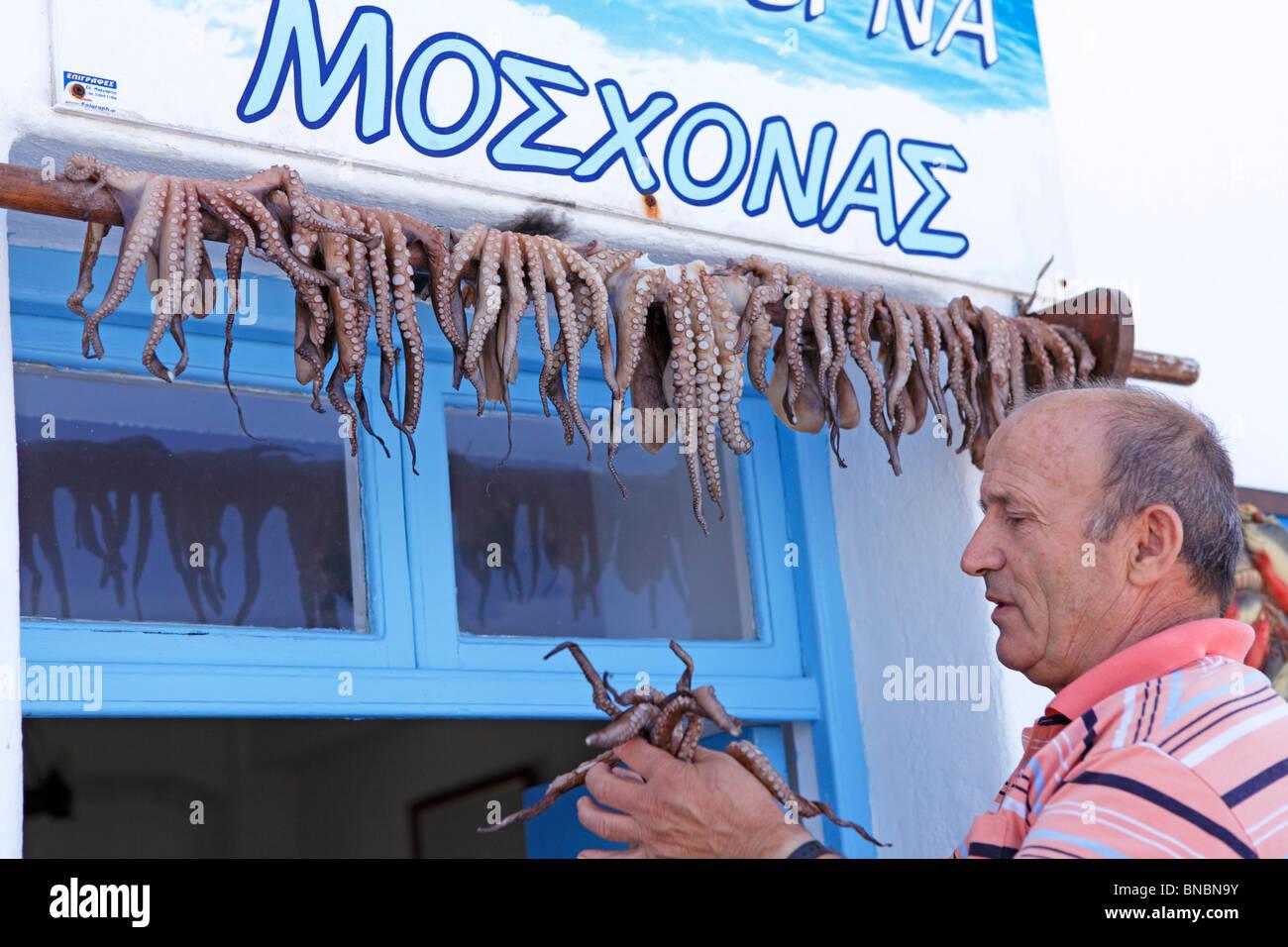 Un homme accroché calamari jusqu'à sec, Naoussa, île de Paros, Cyclades, Mer Égée, Grèce Banque D'Images