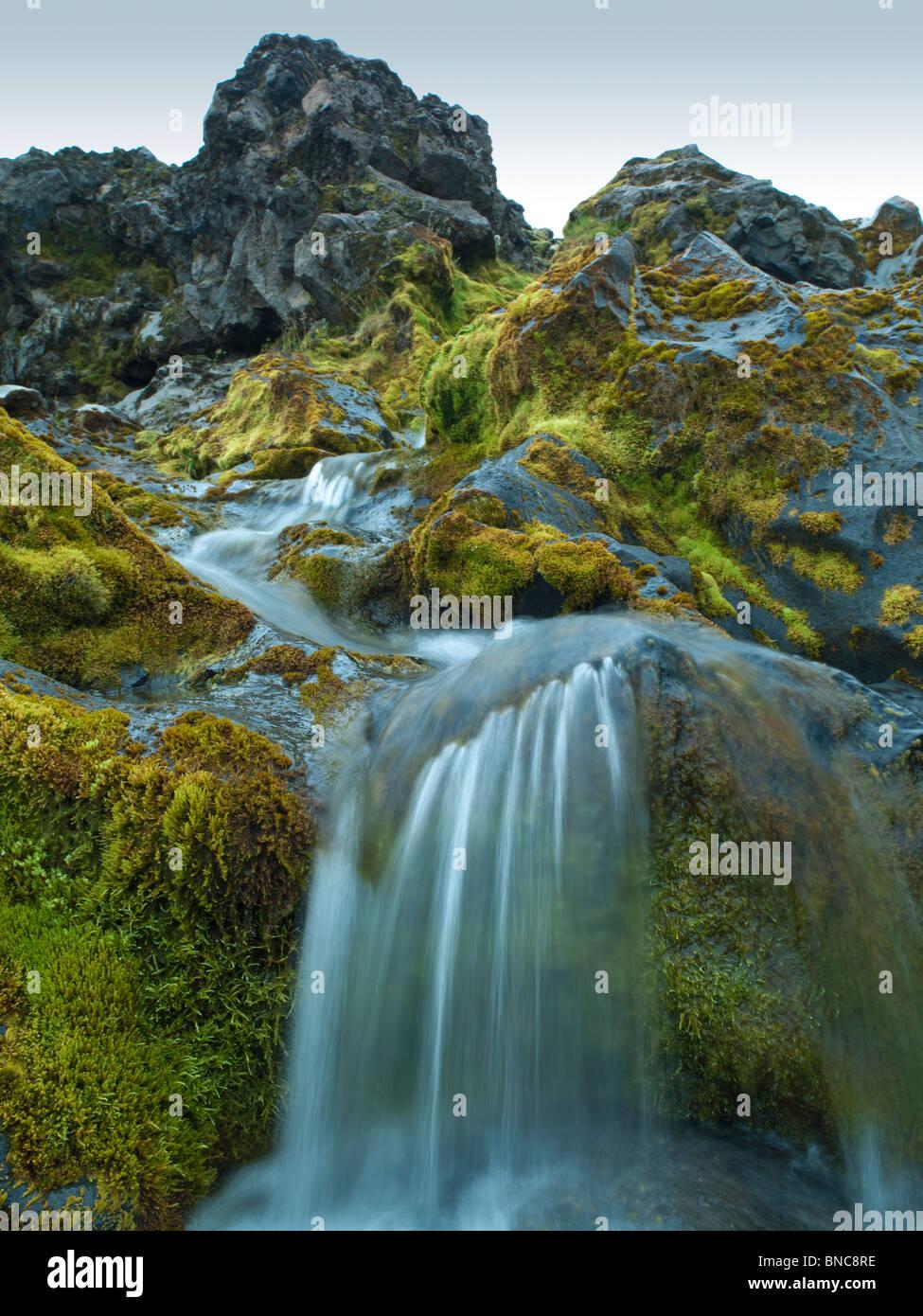 Entre le ruisseau de lave couvertes de mousse dans le plateau central, de l'Islande Photo Stock