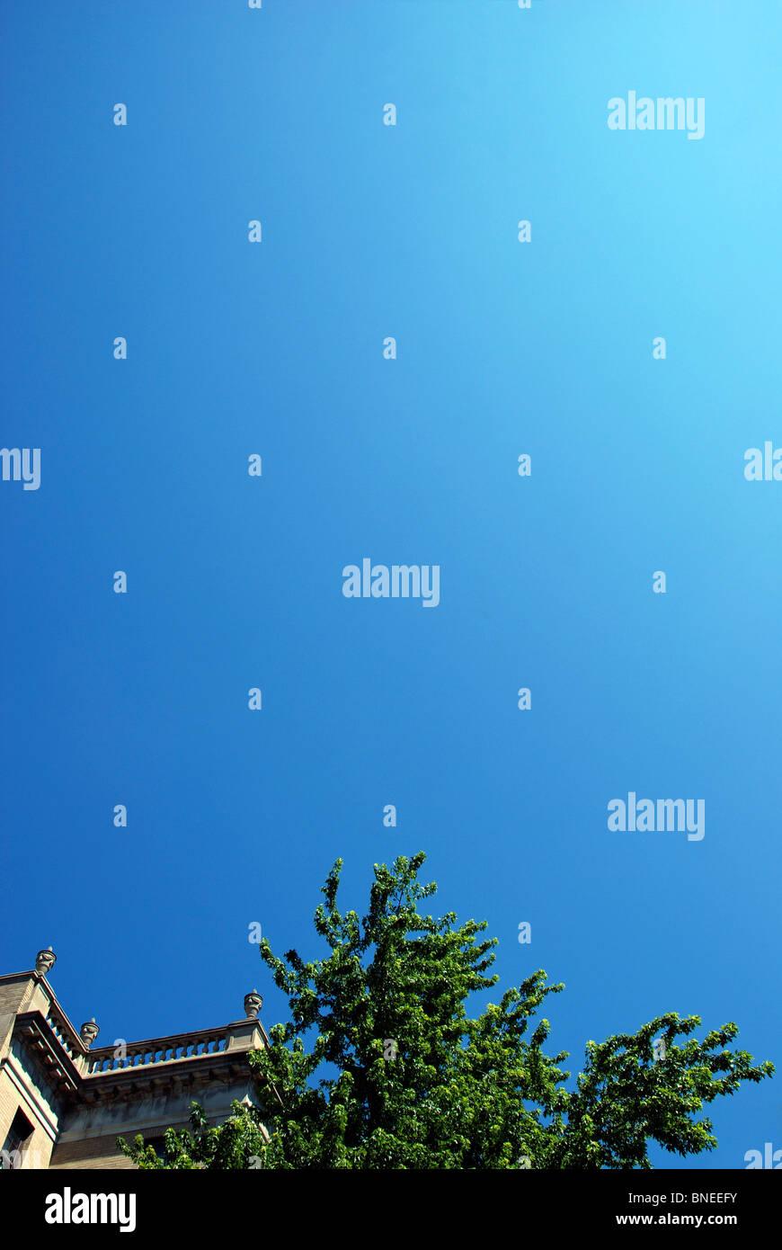 Bâtiment ancien et tree against blue sky Photo Stock