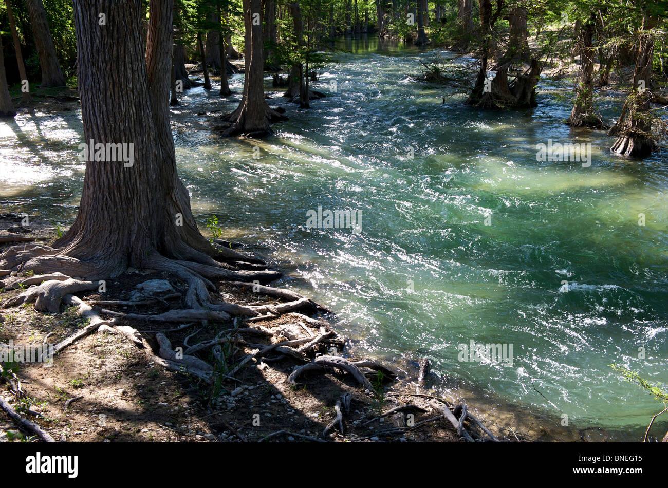 L'inondation de la rivière sa banque à Hill Country au Texas, USA Banque D'Images