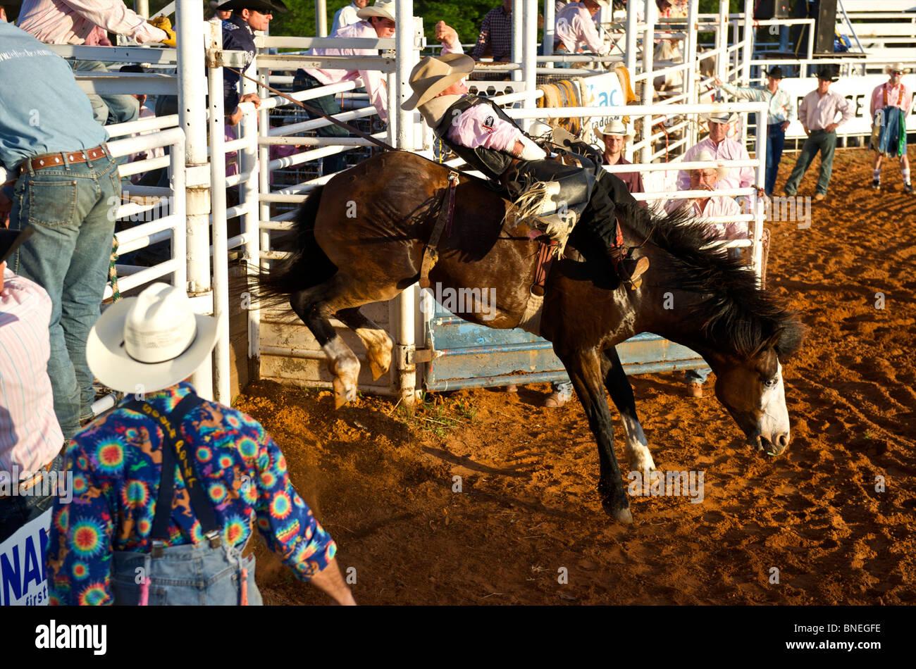Membre de l'érythroblastopénie Cowboy rodeo tente d'équilibre sur le cheval à Petite-ville Bridgeport, Connecticut Banque D'Images