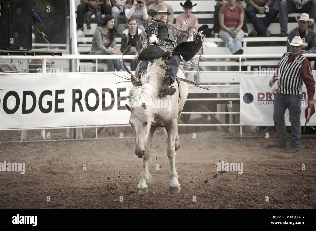 L'essayant de jeter Rodeo Cowboy membre de l'érythroblastopénie à partir de son retour à Petite-ville, Bridgeport, Texas, États-Unis Banque D'Images