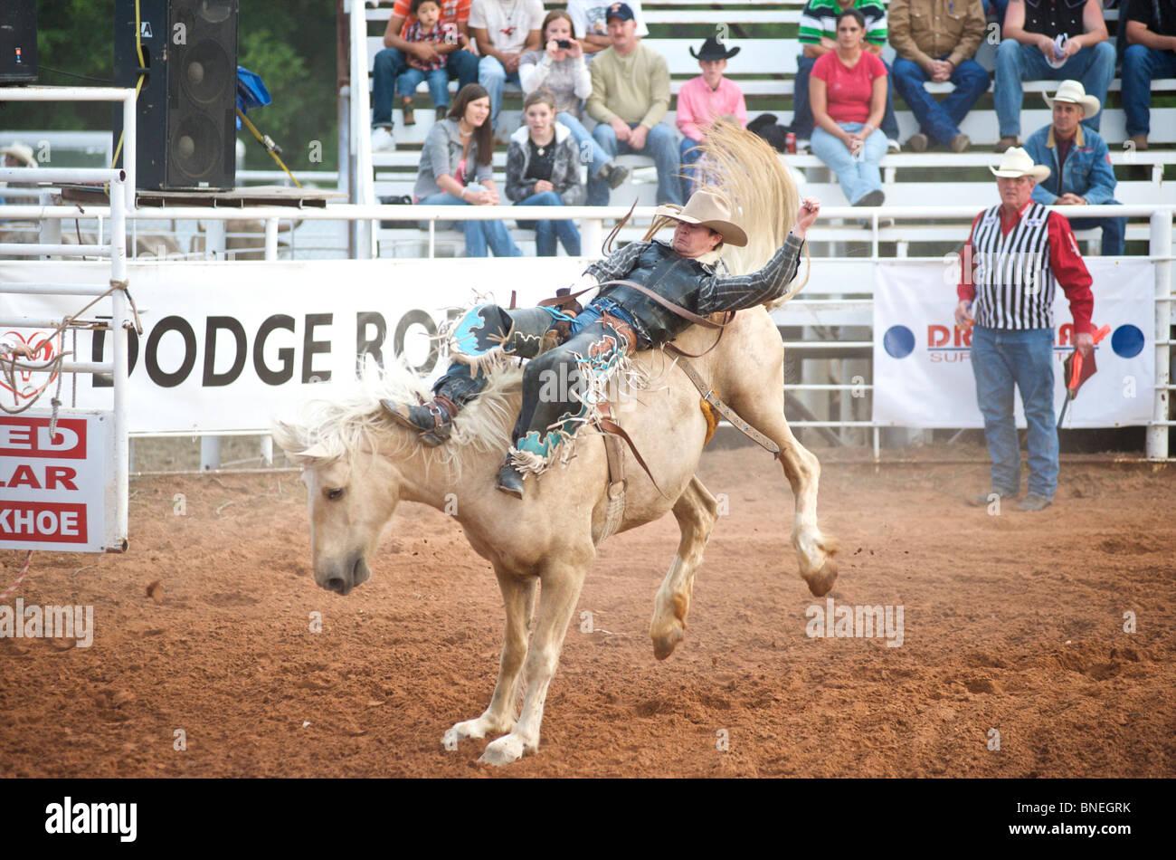 Lancer cheval Rodeo Cowboy membre de l'érythroblastopénie à partir de son retour à Petite-ville Texas, USA Banque D'Images