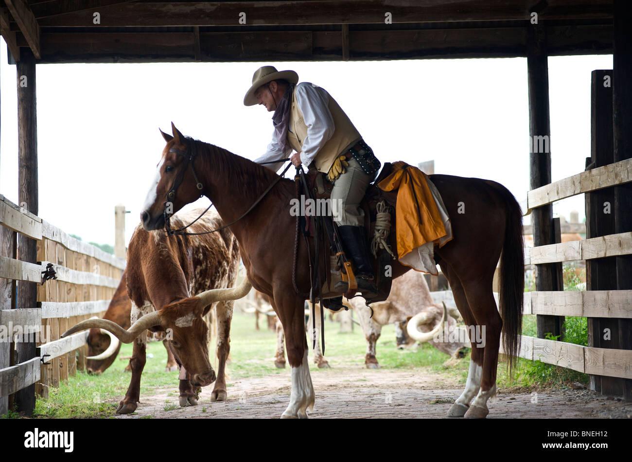 Séance Cowboy avec cheval sur Longhorn ranch dans le parc à bestiaux de Fort Worth au Texas, USA Banque D'Images