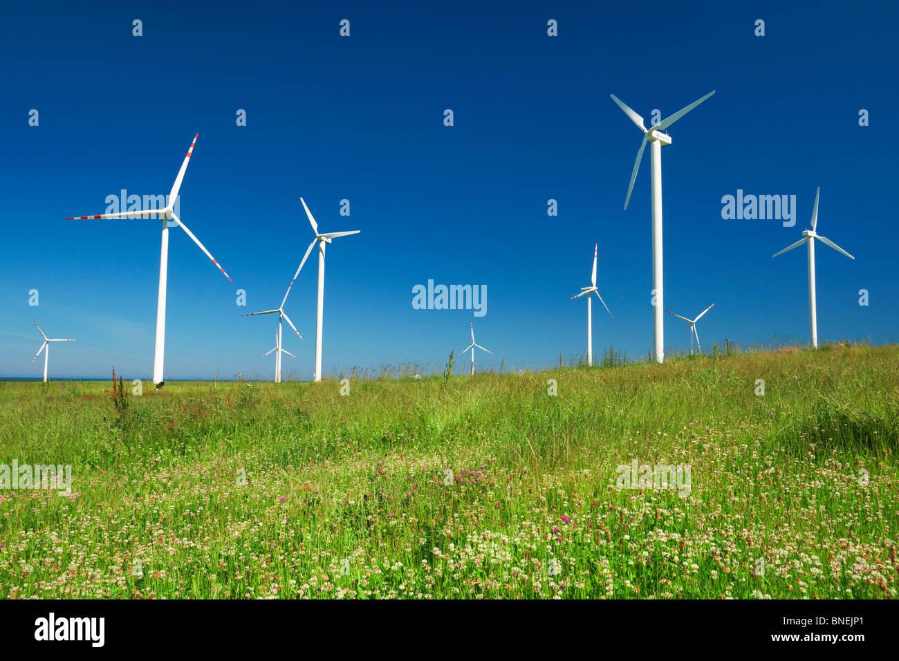 Éolienne, éoliennes, Poméranie, Pologne Photo Stock