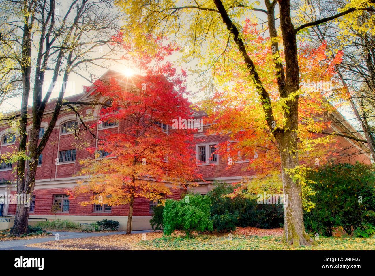 Université de l'Oregon site de rencontre rencontre privée de balayage Wrexham